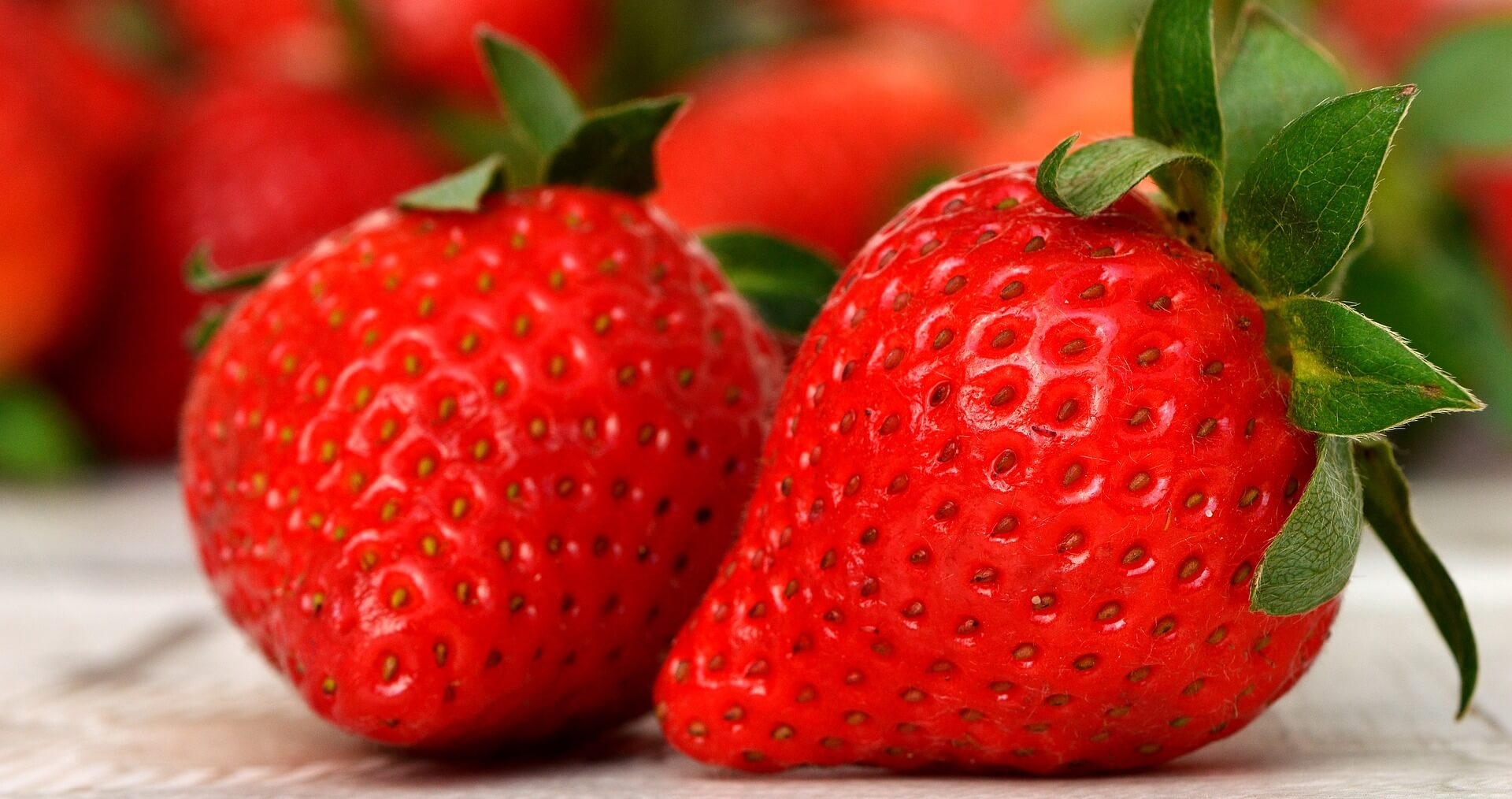 Plant fruit food produce vegetable for good
