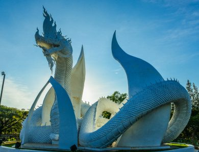 Amazing  architecture  structure of the dragon