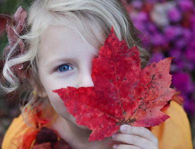 Kid looks Cute with red triangle leaf